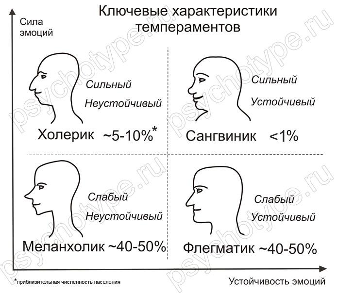Особенностей внешности
