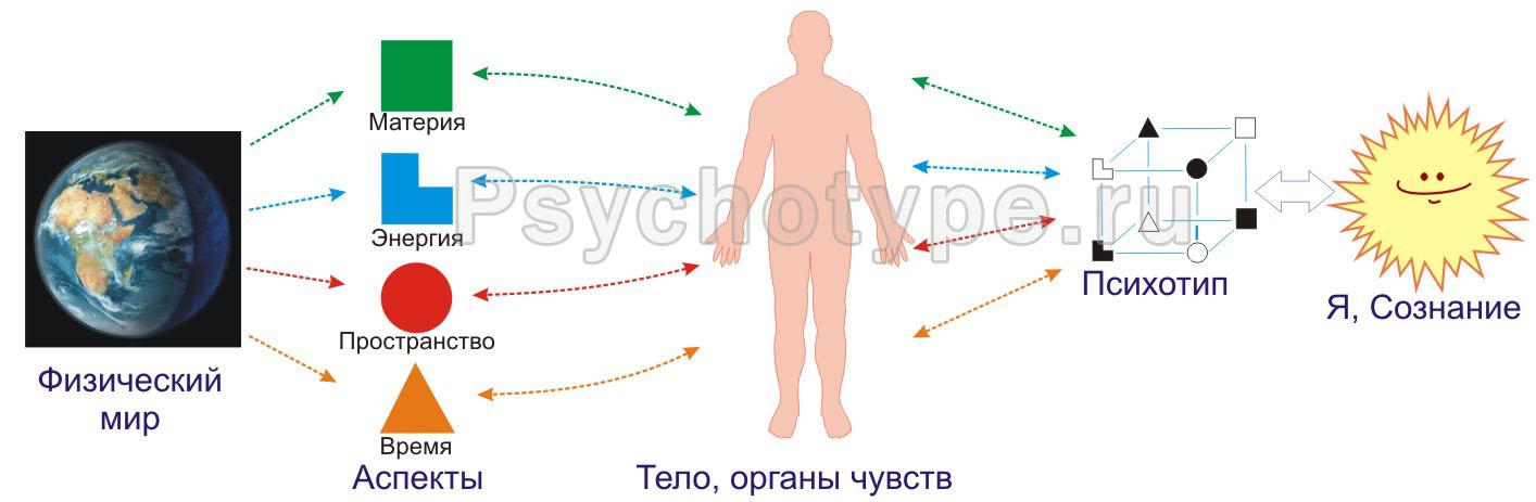 Структура восприятия