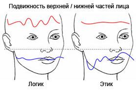 http://psychotype.ru/wp-content/uploads/logika-etika/logik-etik.jpg